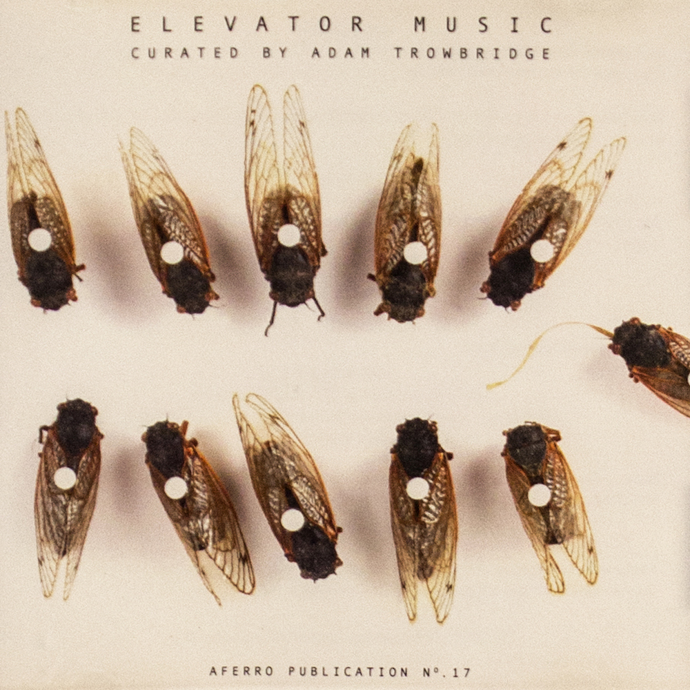 Aferro Publication No. 17, Elevator Music